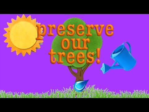 Tree Song Learn about Trees! Roots, and Trunks, and Leaves!