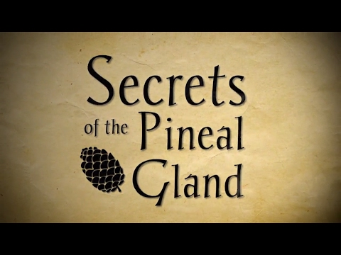 The Secrets Of The Pineal Gland - Full