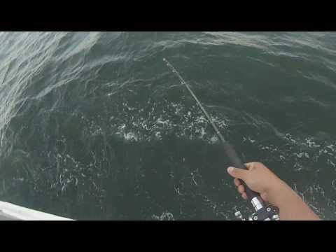 Miss Belmar Princess NJ Belmar Fishing Fail Broke Reel On Rental Rod