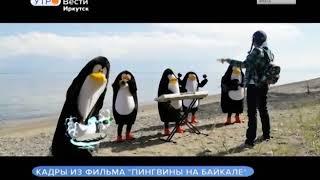 Детский фильм в жанре пантомимы «Пингвины на Байкале» сняли в Иркутске