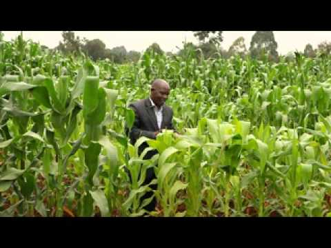 The Fertilizer Push - Supporting Africa's Green Revolution (Full)