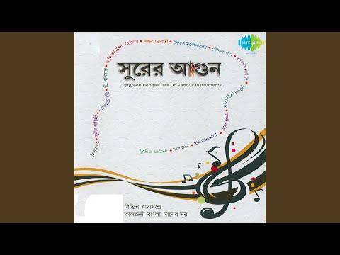 O Nadire Ekti Katha Shudhai Shudhu Instrumental Melodica