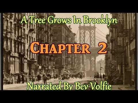 A Tree Grows In Brooklyn Ch 2