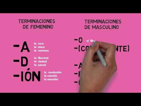 Los Artículos. ¿Femenino O Masculino? // Aprender Español