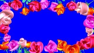 Футажи на Хромакее Розы. Красивая Рамка из Роз. Футажи Рамки. Розы на Хромакее