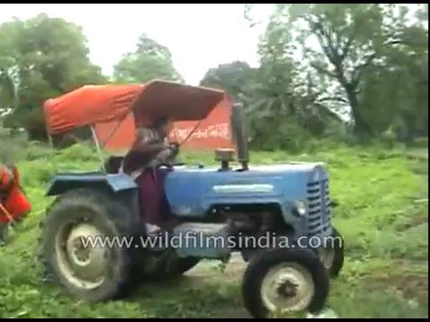 Indian Woman Goes Crazy, Drives Over Another Woman With Her Tractor