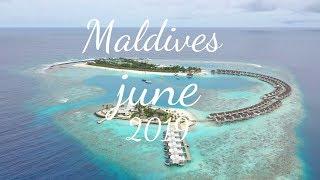 Amazing Maldives Experience