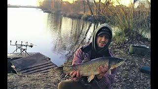 Рыбалка зимой Закрытие сезона 2020 Карп и Белый Амур