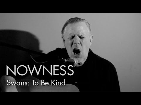 """Swans in """"To be Kind: A Short Film"""""""