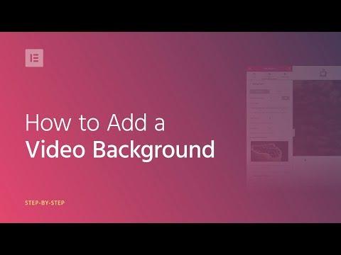 Add Video Background to Your WordPress Website - Elementor Tutorial