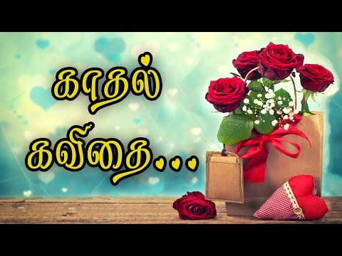 🌹💜-kadhal-kavithi-tamil-{love-quotes-in-tamil-whatsapp-video}-#013🌹💜❤💕