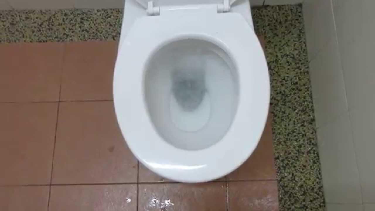 2012 Close Coupled Johnson Suisse toilet - YouTube