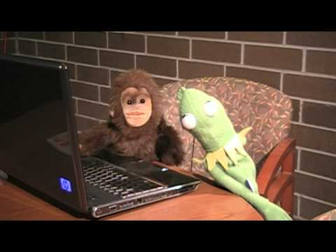 monkey masterbates with frog