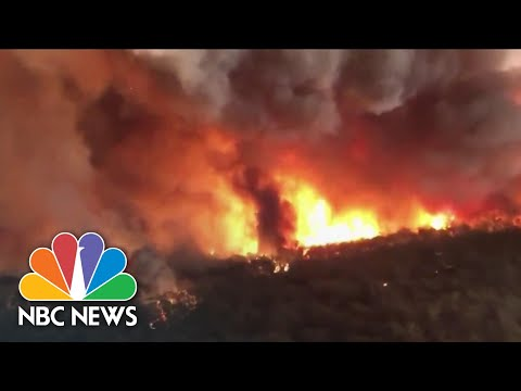 From Hurricanes To Wildfires, 2020's Biggest Climate Headlines | NBC News NOW