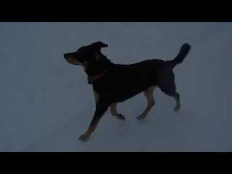 Koudlam - Hole (Music video)