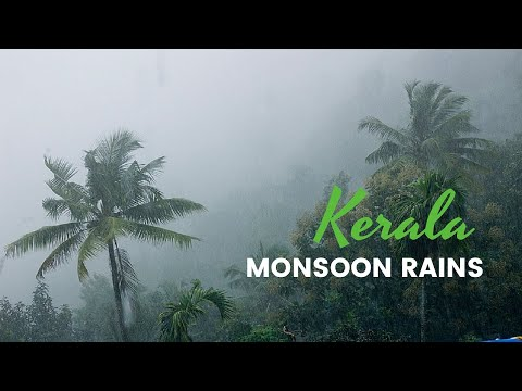 Monsoon Rain Kerala Tourism