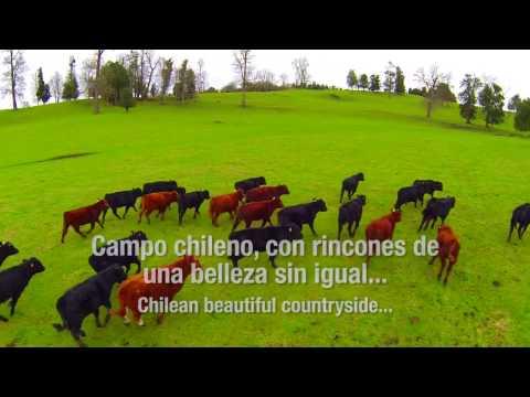 Destino Provincia de Osorno - RIO NEGRO - Patagonia Norte - Chile