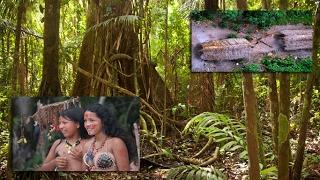 Amazon Yerlileri - İlkel Kabileler Mp3