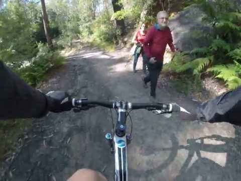 North Epping to Lane Cove MTB