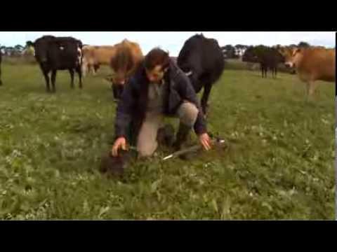 John Smith Explains Soil and Biological Farming for ODFA