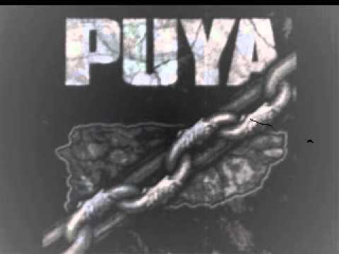 Puya - Aguaje