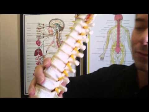 Dr Calvins Clinic  Parte 1 Porque tenemos DOLORES West Valley City near Salt Lake City
