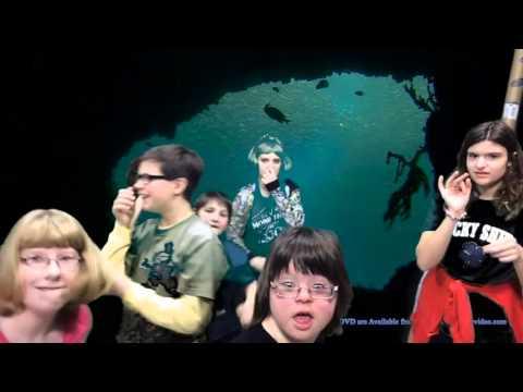 Aquarium no music