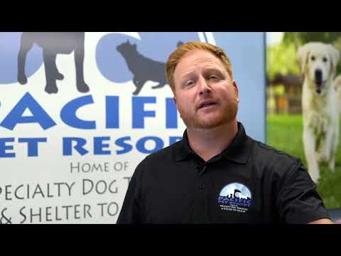 Pacific Pet Resort - Oceanside, CA, United States