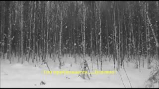 """Зимняя охота на зайца с русской гончей """"Боба"""" 2016"""