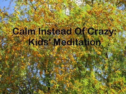 Calm Instead Of Crazy: Kids' Meditation