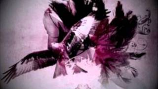 Apocalyptica- I Don't Care