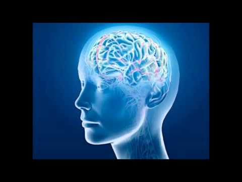 Frontal Lobes - Isochronic Tones - Brainwave Entrainment Meditation