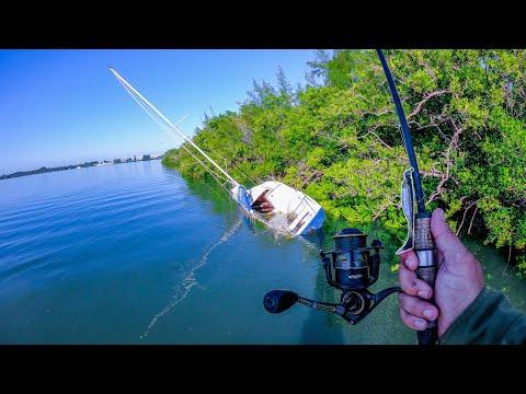 Fishing Beautiful Inshore Islands
