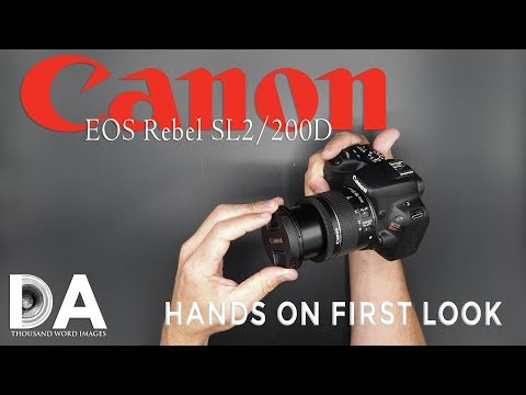 Canon EOS Rebel SL2/200D/Kiss X9 - Hands On First Look - 4K - 동영상