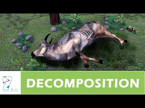 DECOMPOSITION _ PART 01