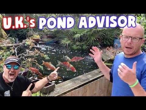 *KOI PONDS* In The U.K. By The Pond Advisor!
