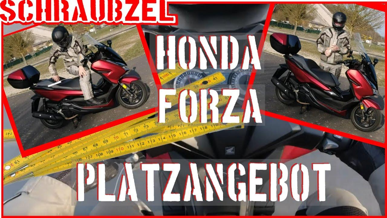 Honda Forza auch für große Menschen? - YouTube