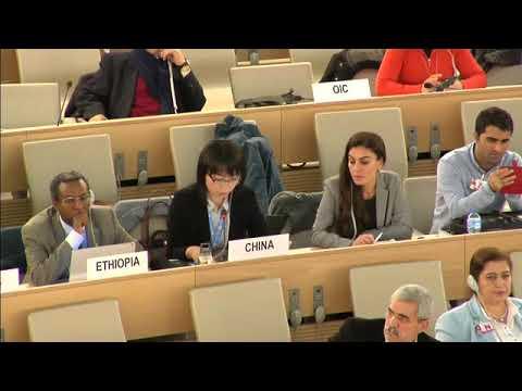 Chinese Delegation Intervention at UN Minority Forum ( English - 2017-11-30)