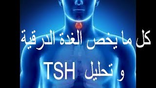 كل ما يخص الغدة الدرقية و تحليل TSH
