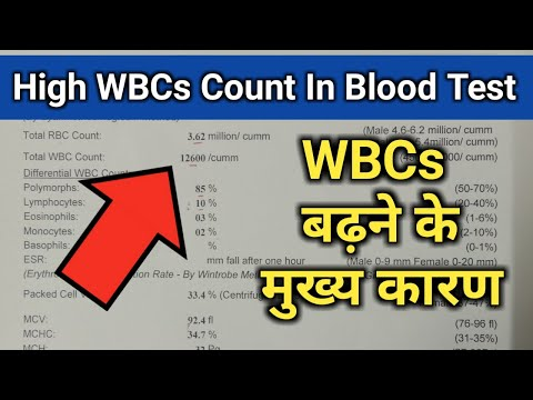high-wbcs-count-in-cbc-test,-wbcs-blood-report,-white-blood-cells-high,-wbc-in-hindi,-cbc-test-hindi