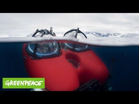 Tauchfahrt in der Antarktis