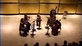 Antonin Dvorak Streichquintett op 77 G Dur 1. Satz