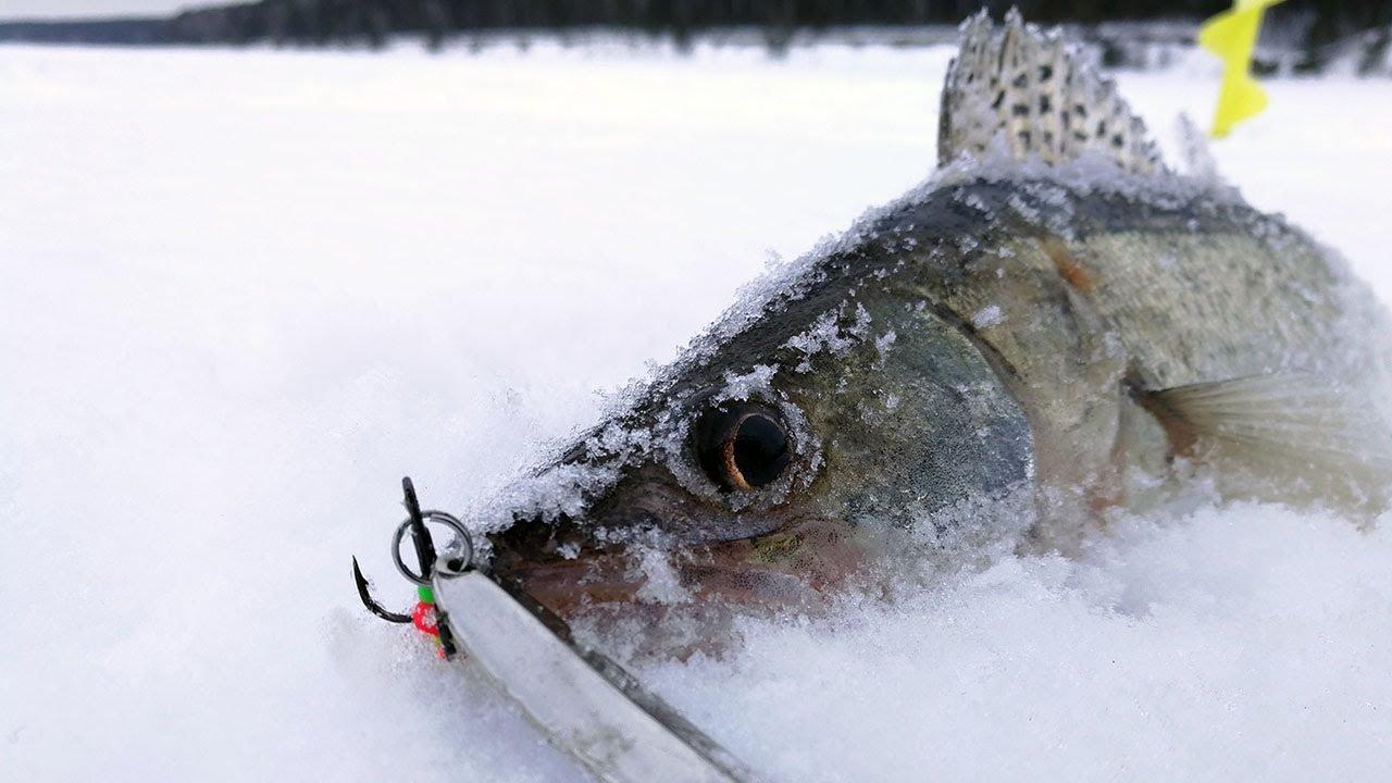 зимняя рыбалка 4
