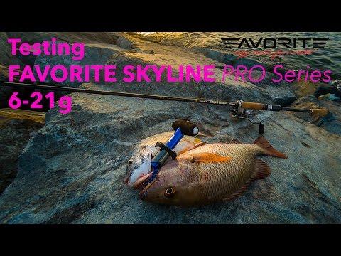Jighead TV: Shore Fishing in Dubai - Mangrove Jack, Bream on soft bait