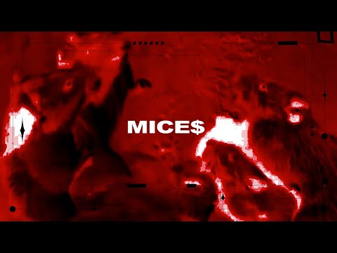 HAZZAH x ONZ - MICES (Official Visualizer)
