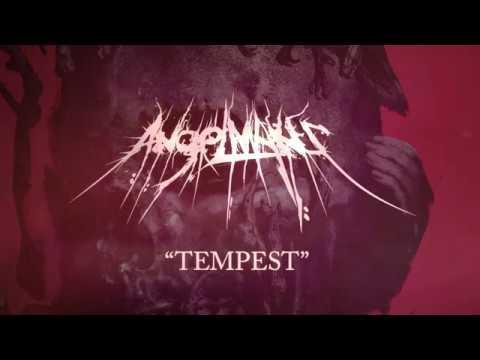 AngelMaker - Tempest
