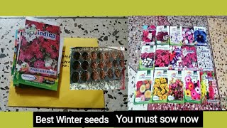 160. Winter flowering seeds you can sow right away.