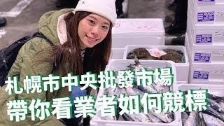 【札幌市中央批發市場】早起參觀生鮮拍賣