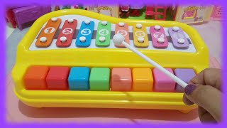 Xylophone and Piano Learning for Toddlers ♥ Toys World Video