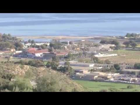 Malibu Country Mart Rainwater HOG Short